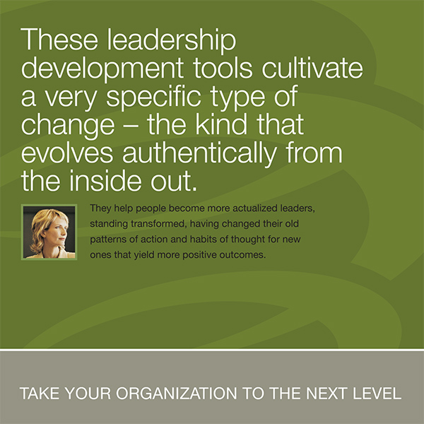 The Leadership Circle Brochure Design
