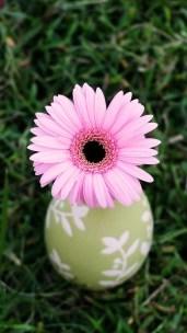 flower_egg