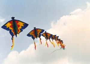 kite butterfly2