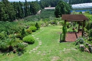 data garden 1341757995 sm DSC 0116