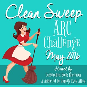 CleanSweep2016x300