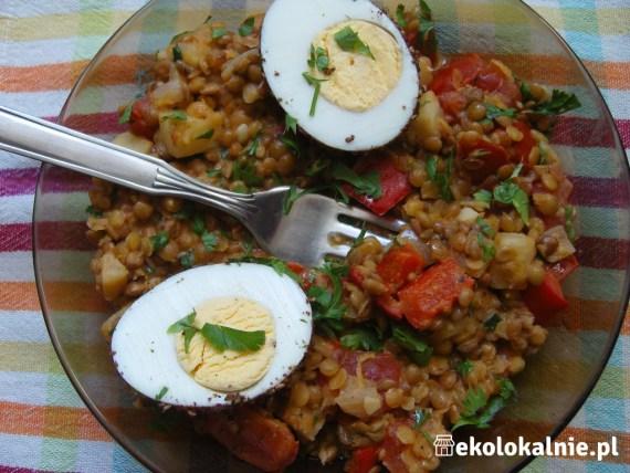 Brązowa soczewica z musztardą, cytryną i jajkiem