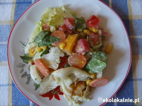 Kolorowa sałatka z sosem śmietanowo-chrzanowym
