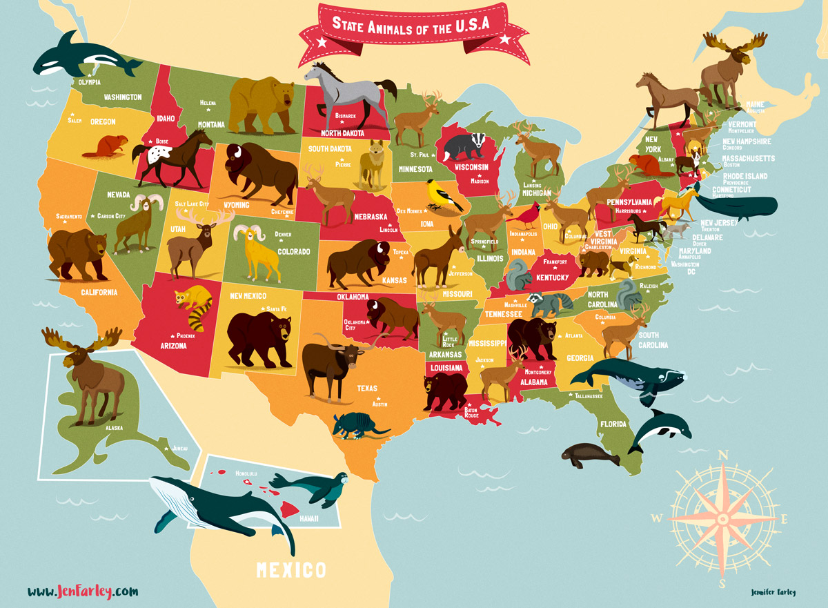 Animal Design State Animals Of The Usa Map Jennifer Farley Illustration Maps