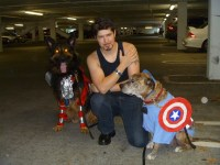 How to make dog Halloween costumes (and photos!)