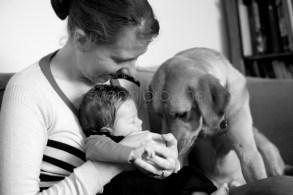 natural newborn photography by jenni browne 17