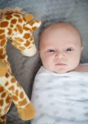 natural-newborn-photography-_-5