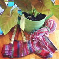 Life in a Knitted Sock