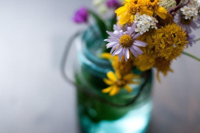 f3a6c-utwildflowers_jenjohnson_9