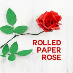 Small Of Help Me Find Roses