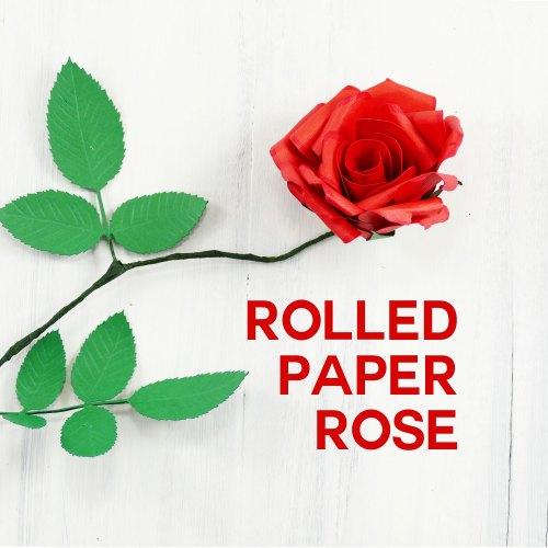 Medium Of Help Me Find Roses
