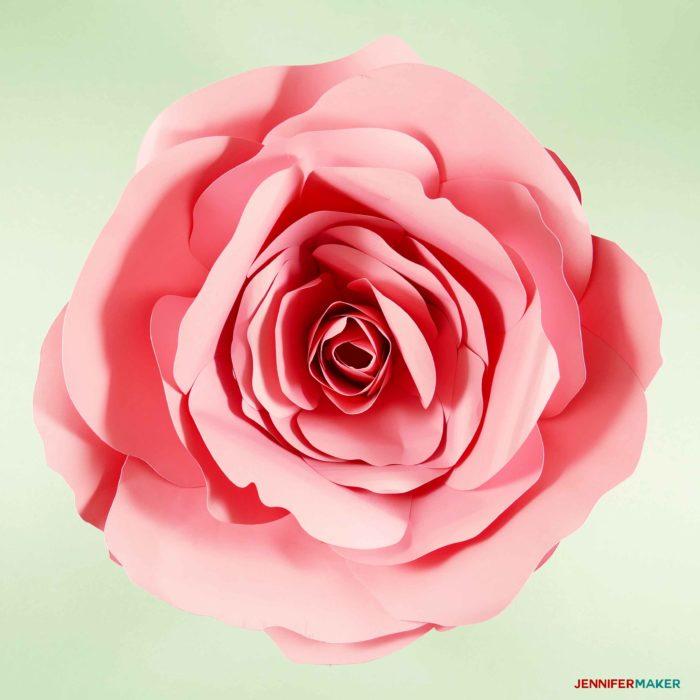 Giant Flower Spellbound Rose - Every Petal is Unique! - Jennifer Maker