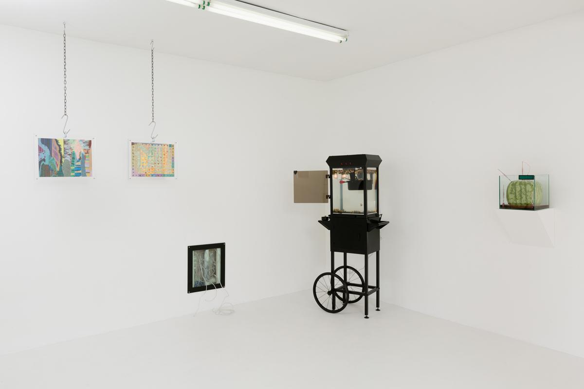 Max Hooper Schneider -  install