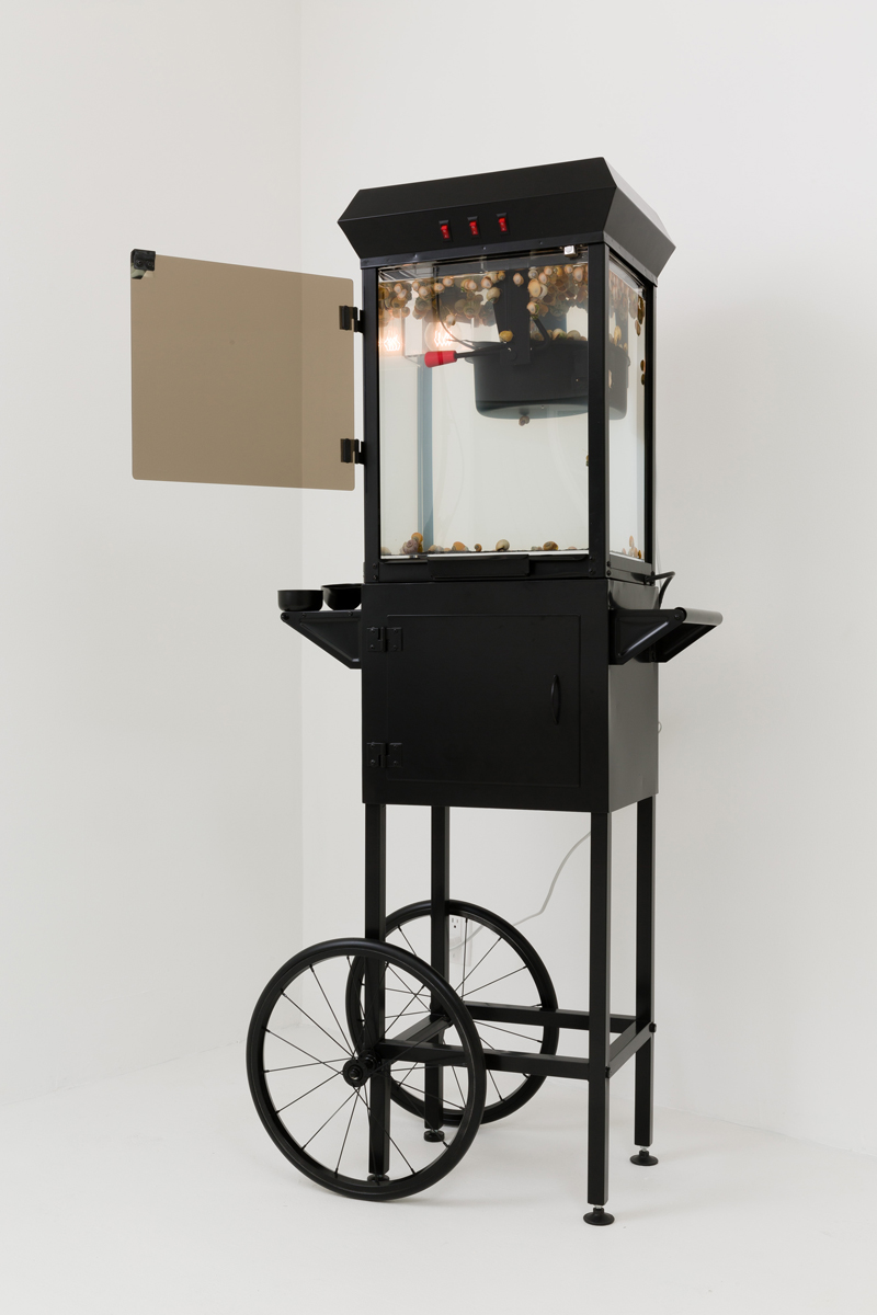 Max Hooper Schneider - Aral Spring Trolley, 2014, modified popcorn trolley, live freshwater ecosystem, genus Pomacea snails, submersible filter, 60 1/2