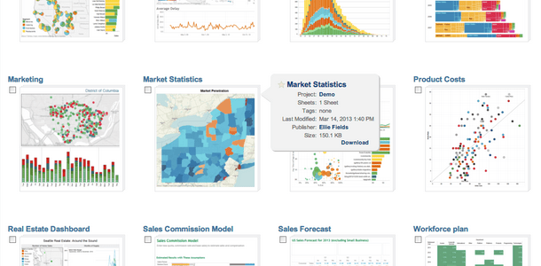 Tableau Tips,Tricks,Best Practices – Formatting