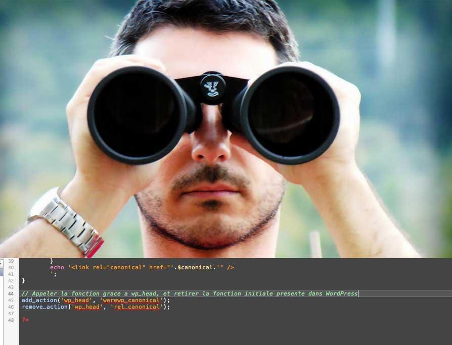 Insérer le tag canonical dans le header de votre thème WordPress