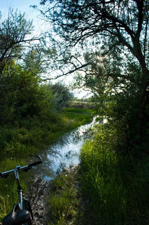 Riverfront Park Trail Fun