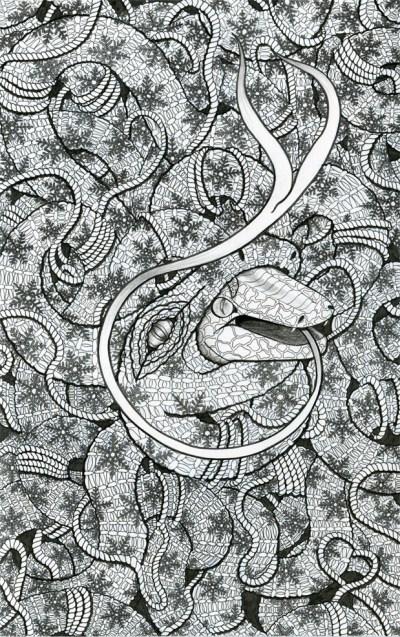SnakeSkin: Ink on Bristol by Jessica Fortner