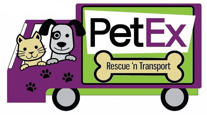 PetEx Rescue 'n transport logo design