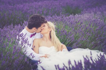 Hitchin-Lavender-Fields-12