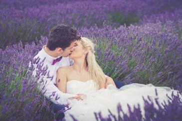 Hitchin-Lavender-Fields-12