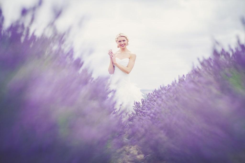Hitchin-Lavender-Fields-35