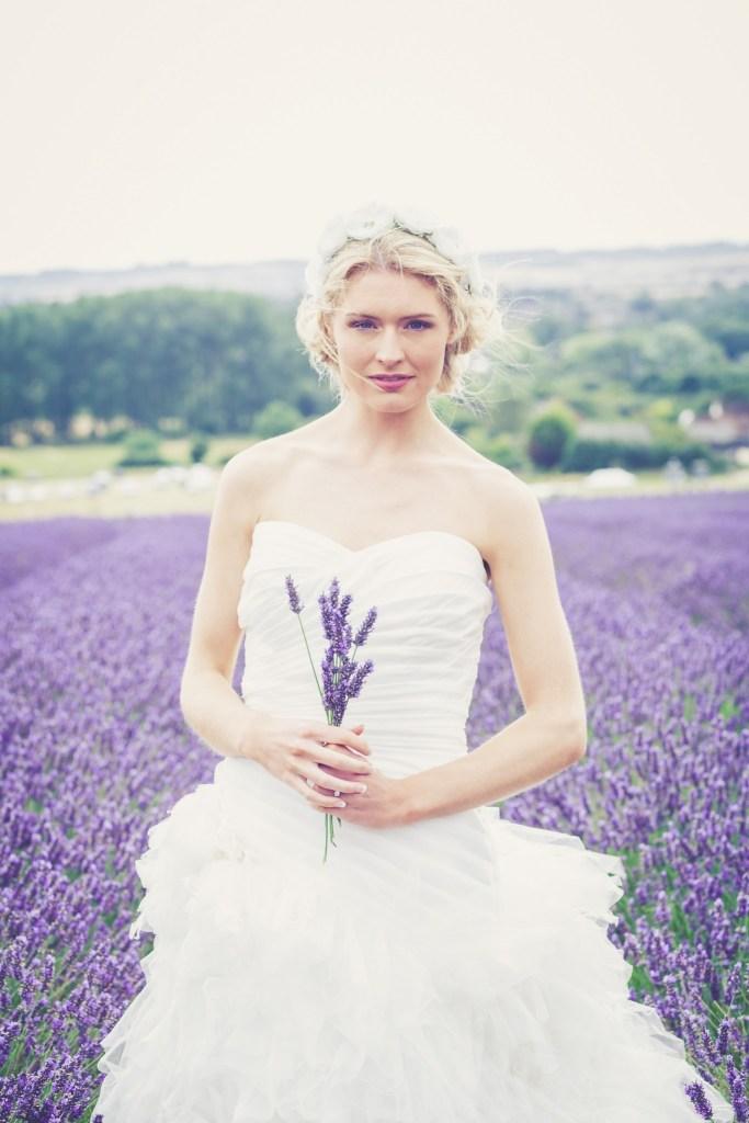 Hitchin-Lavender-Fields-65
