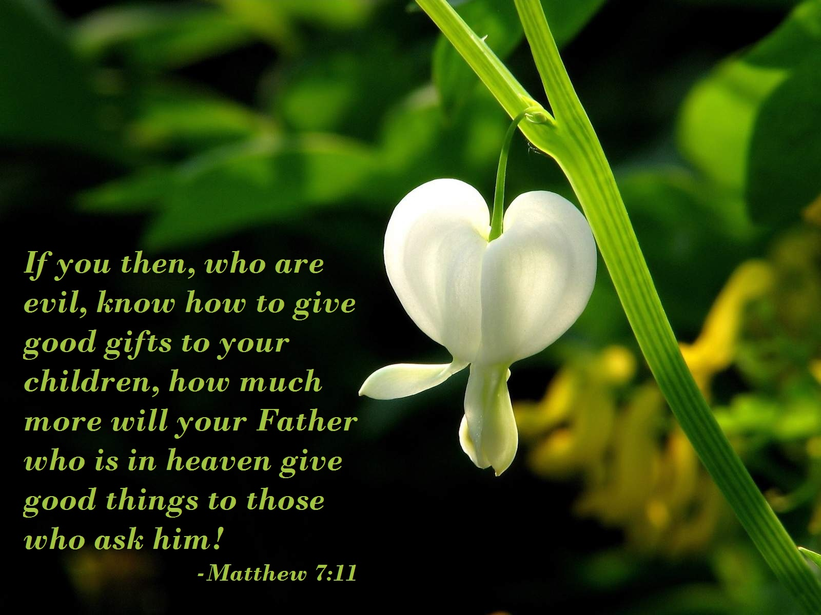 Peace Quotes Wallpapers Hd Bible Verses On Wallpapers Jesus The Almighty