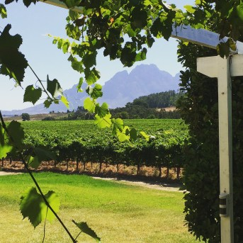 Western Cape Wine Country