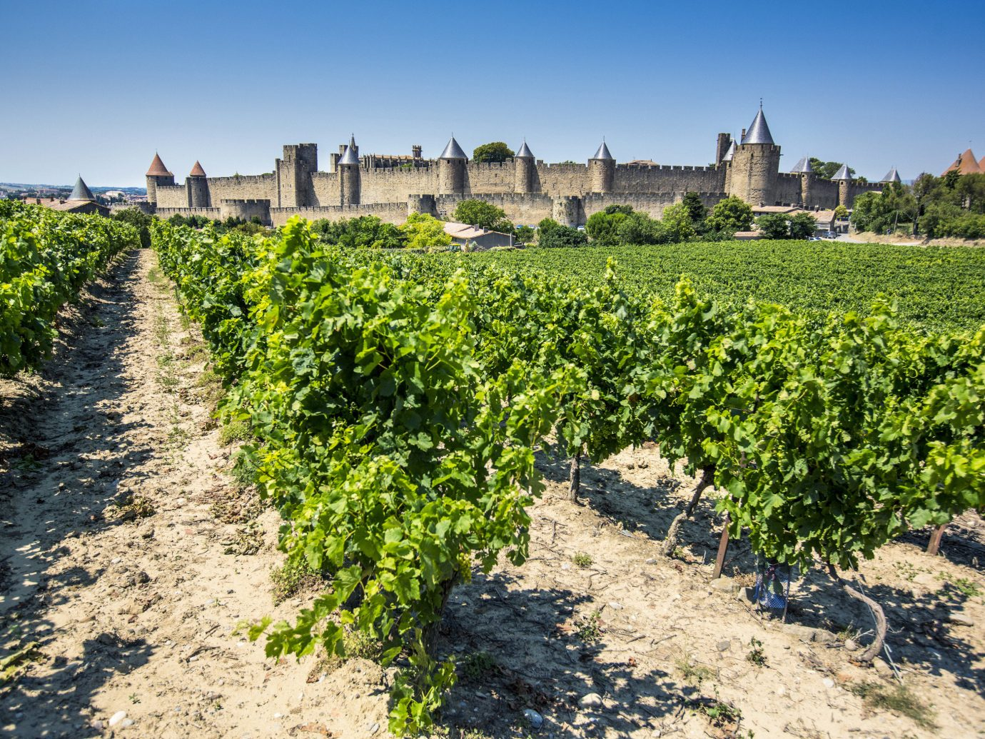 Black List Bordeaux 8 Gorgeous Wine Regions In France That Aren T Bordeaux Jetsetter