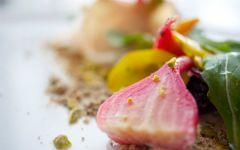 Beet Salad with Pistachios