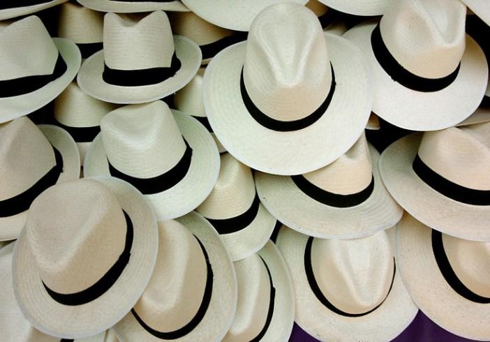 Panamas Hats