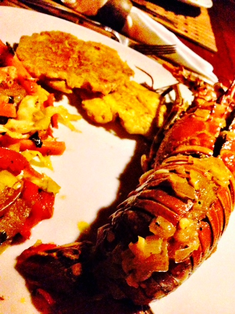 lobster panama dolphin bay