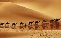 pinterest saudi arabia desert 1