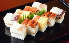 shogun sushi tampa florida 3