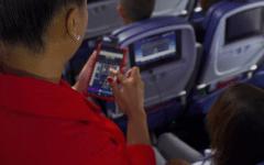 Delta flight attendant app