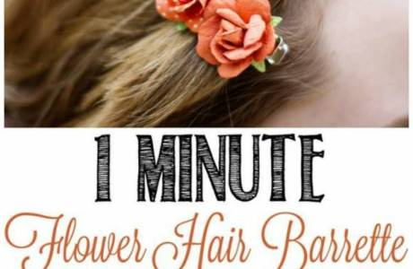 1 Minute Hair Barrettes