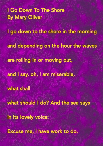 Mary Oliver I Go Down To The Sea