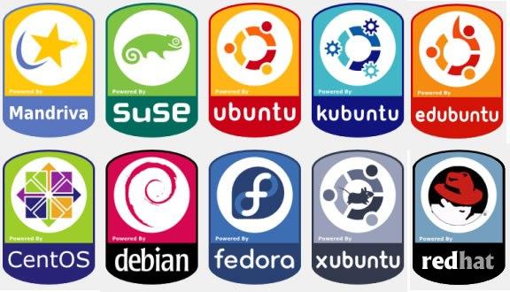 Como elegir la mejor distribución Linux para nuestros equipos