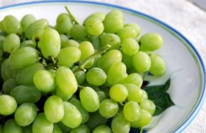 Wonderful Health benefits of Grapes (Vitis Vinifera)