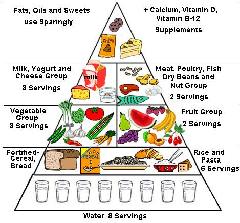Pyramid diagram jhzkim