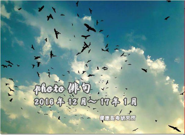 photo俳句(12月1月合併号)
