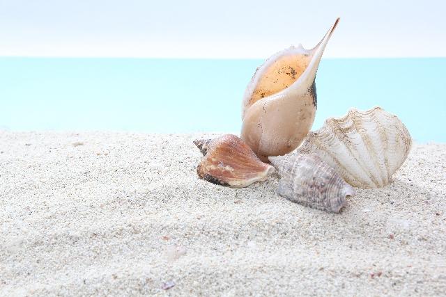 「海」といえば何が思い浮かぶ?歌・曲・遊び・食べ物など連想できることまとめ