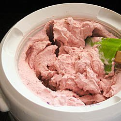 Summer project: Homemade ice cream