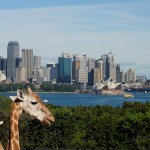 A trip to Sydney can be more affordable than you imagined if you use your Aeroplan points. Contrary to what some folks believe, there are no blackout dates with Aeroplan.