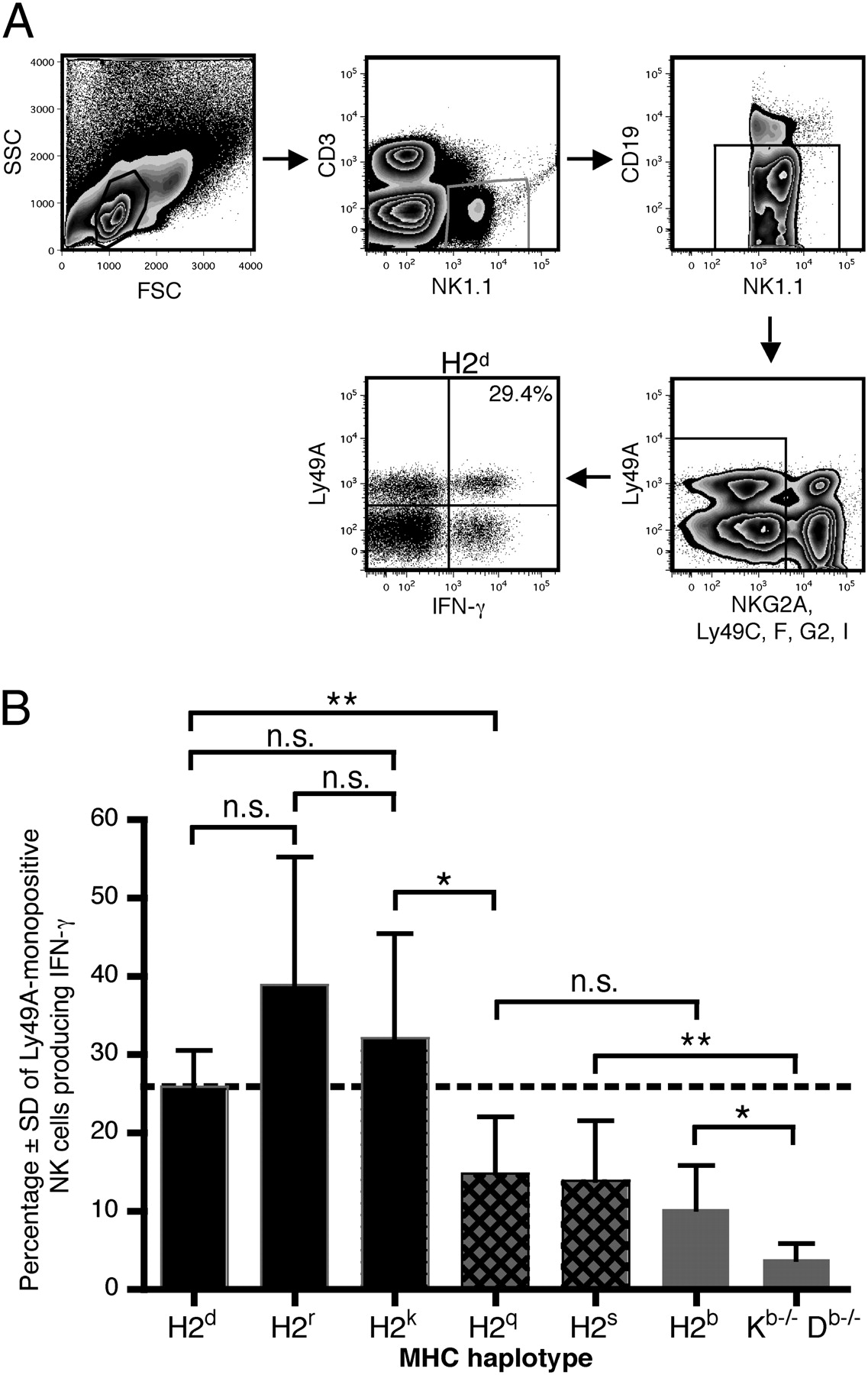 Gietmortel Gamma Effects Of Mhc Class I Alleles On Licensing Of Ly49a Nk Cells