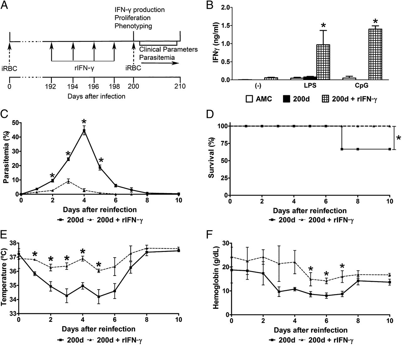 Agnes One Step Gamma Ifn γ Induced Priming Maintains Long Term Strain Transcending