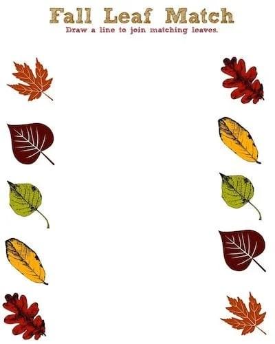 Fall Leaf Printable Activity Sheet - Leaf Match - Jinxy Kids