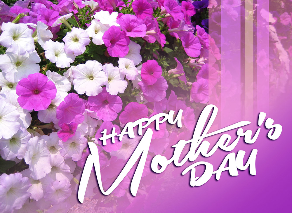 Mother\u0027s Day - Jamaica Information Service - mother's day