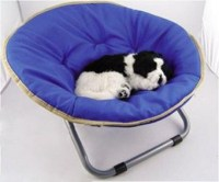 Dog chairs - Lookup BeforeBuying